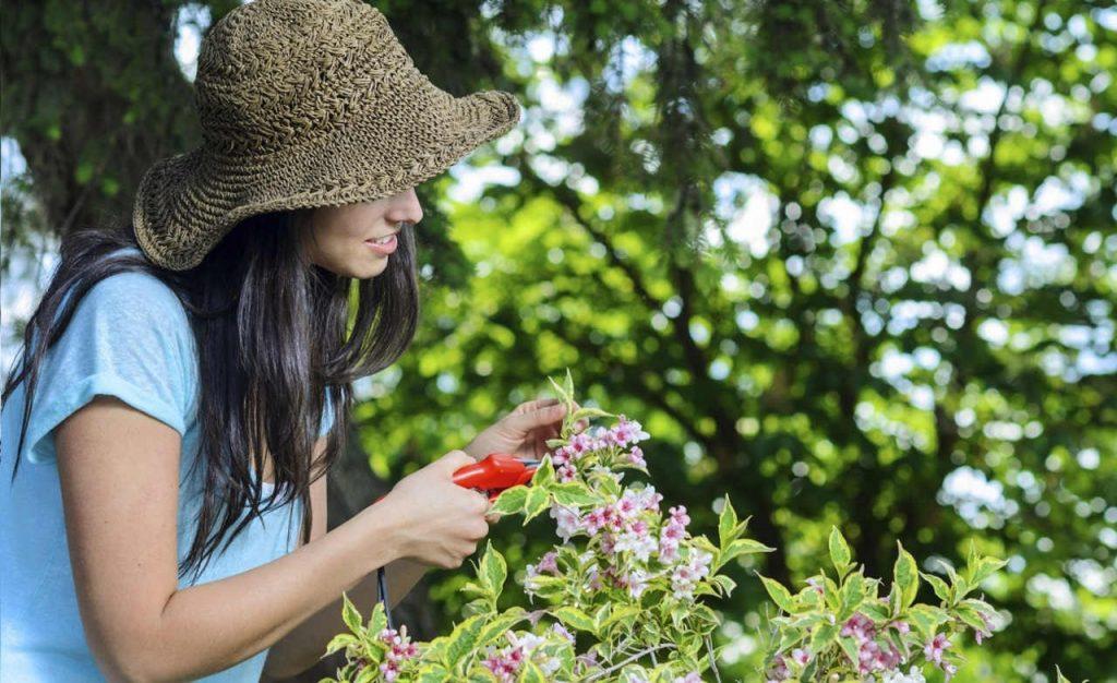 como podar jardines