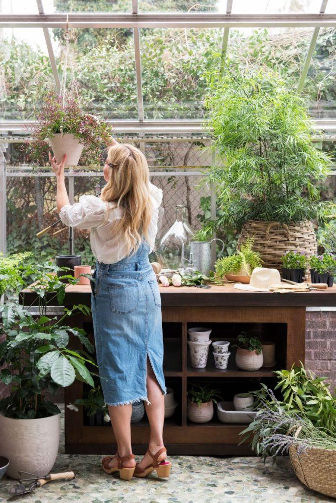 cuando podar plantas de interior
